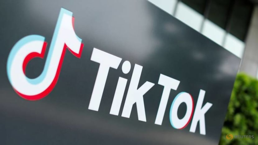 Pakistan to unblock social media app TikTok after it vows to moderate content