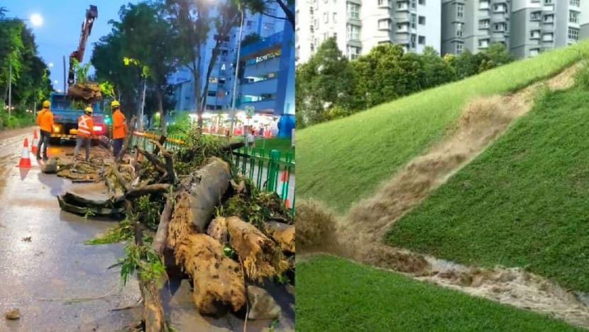 Soil erosion due to heavy rain caused water to gush down slope in Bukit Batok: NParks