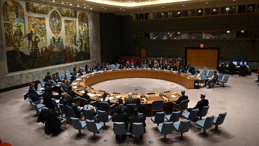 UN Security Council stalemate over COVID-19