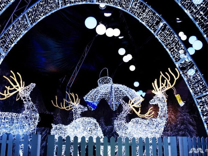 5 things to look out for at Gardens By The Bay's Christmas Wonderland