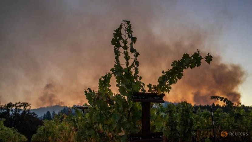 Firefighters make headway in California wine country, 'gigafire' reaches 1 million acres