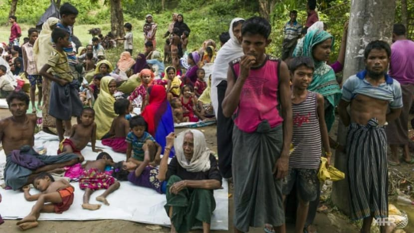 Persecution of Rohingyas makes them vulnerable to being seduced by terrorists, minister warns