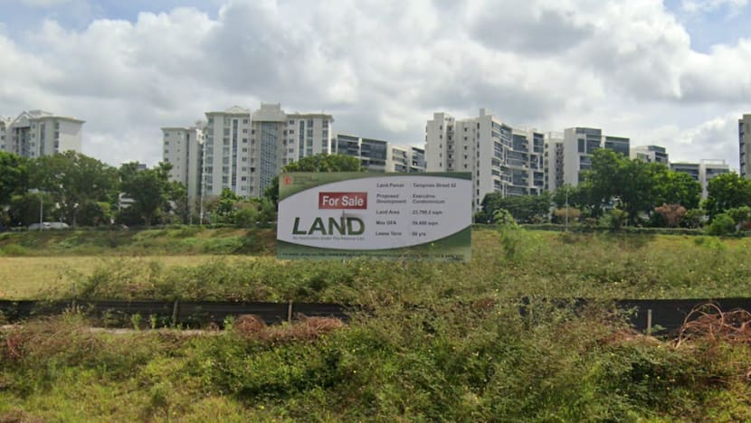 Government maintains 'moderate supply' of land for private housing; new sites at one-north, Tampines Street 62