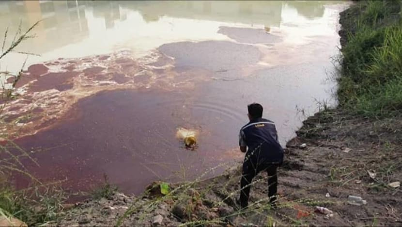Pollution detected in Klang River, believed to be chemical waste