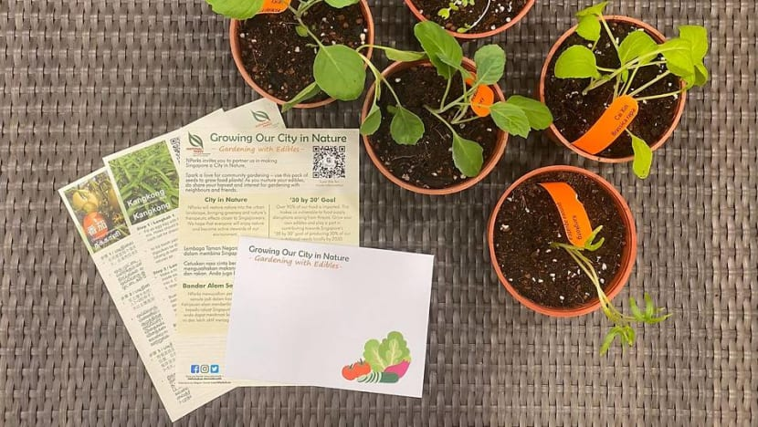 NParks to give packets of vegetable seeds to households to encourage home gardening