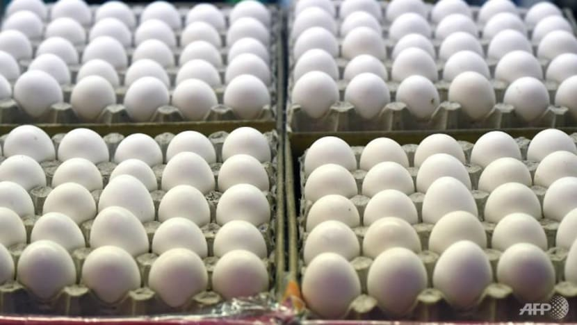 Singapore has 'alternative sources' for eggs: AVA says after Malaysia warns may limit exports