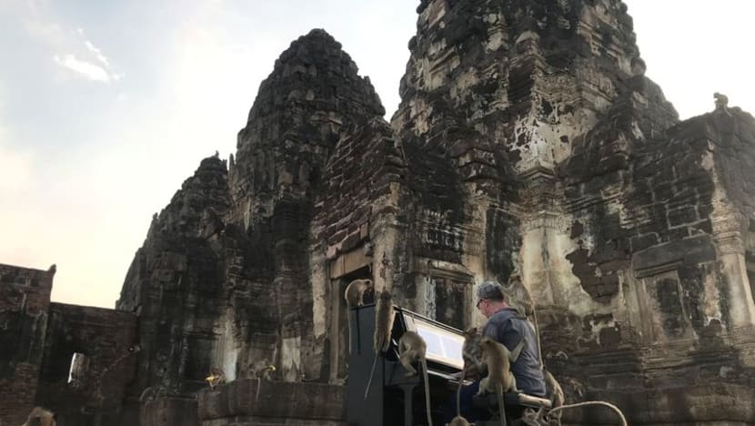 British pianist's velvety tones soothe Thailand's hungry monkeys