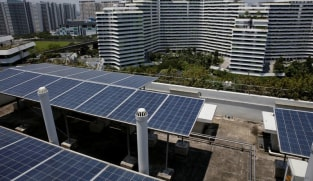 Sunseap explores solar farms in Indonesia to power Singapore