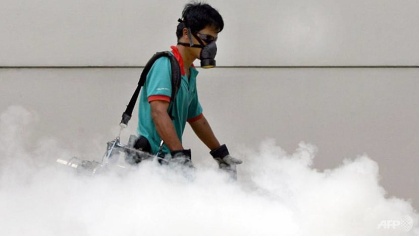 Higher risk of dengue transmission as Aedes mosquito population growing islandwide, says NEA