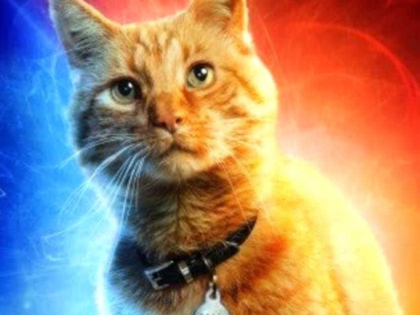 Captain Marvel's pet cat Goose gets its own movie poster