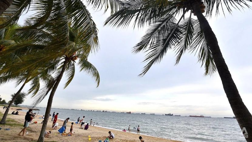 Body found at East Coast Park in suspected drowning