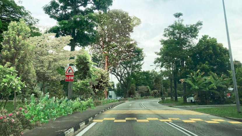 New central green corridor connecting East Coast Park and Changi Beach Park to be created: Heng Swee Keat