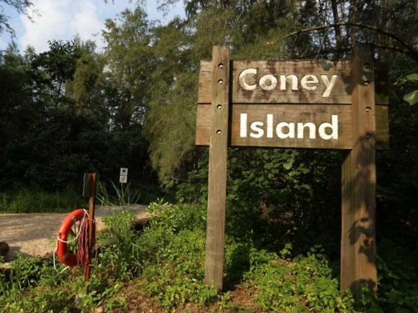 NParks launches 36km trail linking Coney Island with Jurong Lake