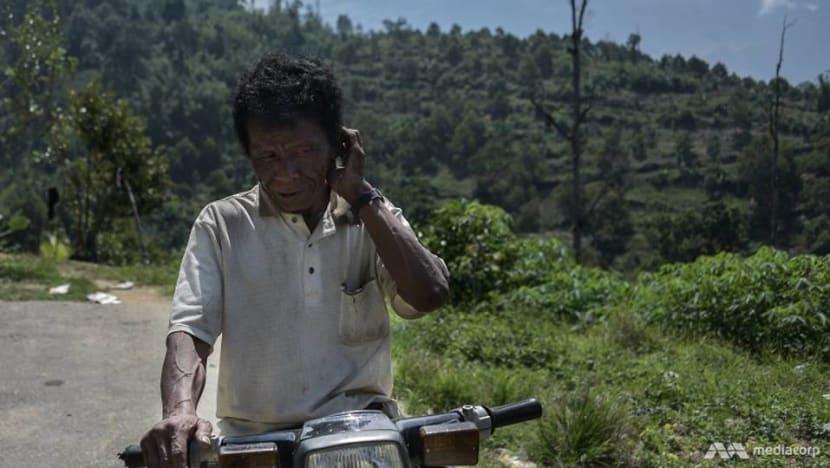 Orang Asli land under threat in Pahang asMusang King plantations grow