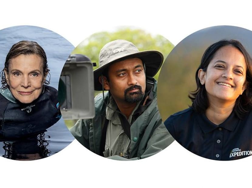 Wildlife heroes: Why these National Geographic explorers risk all for love of nature