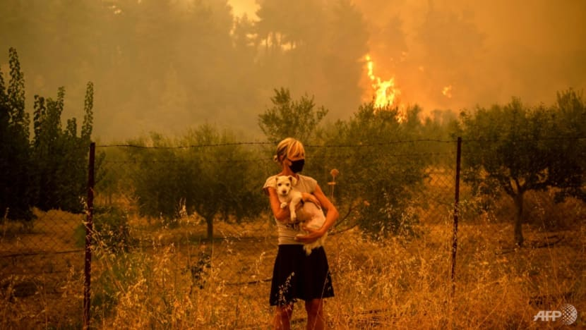 UN sounds clarion call over humans 'irreversible' impact on climate