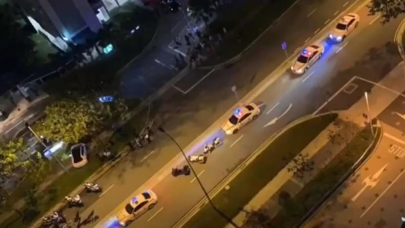 Driver flees from police, sparking high-speed chase before crashing into tree at Canberra Street