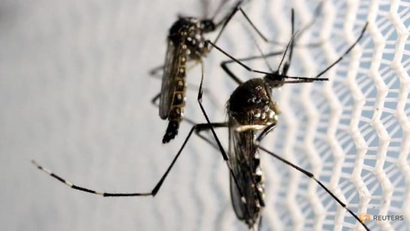 21% more mosquito breeding habitats destroyed in 2018 through use of Gravitrap system