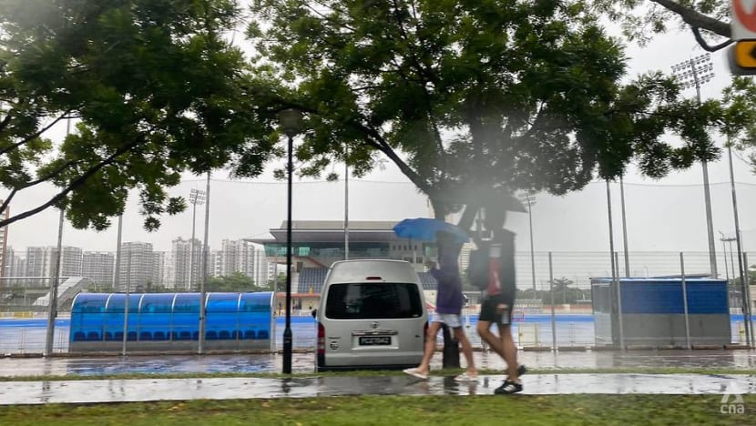 More thundery showers expected in first half of July: Met Service