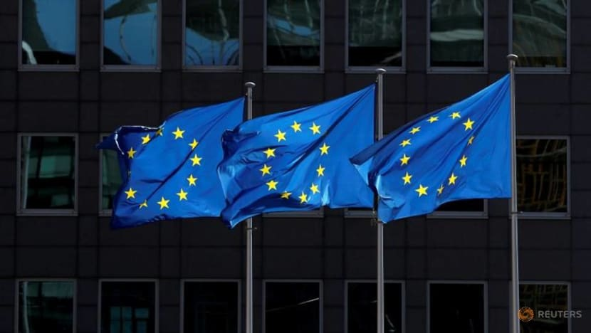 EU to fund transfer of COVID-19 patients within the bloc to prevent hospitals collapsing