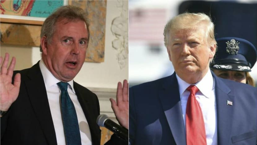 UK envoy said Trump ditched Iran deal to spite Obama: Report