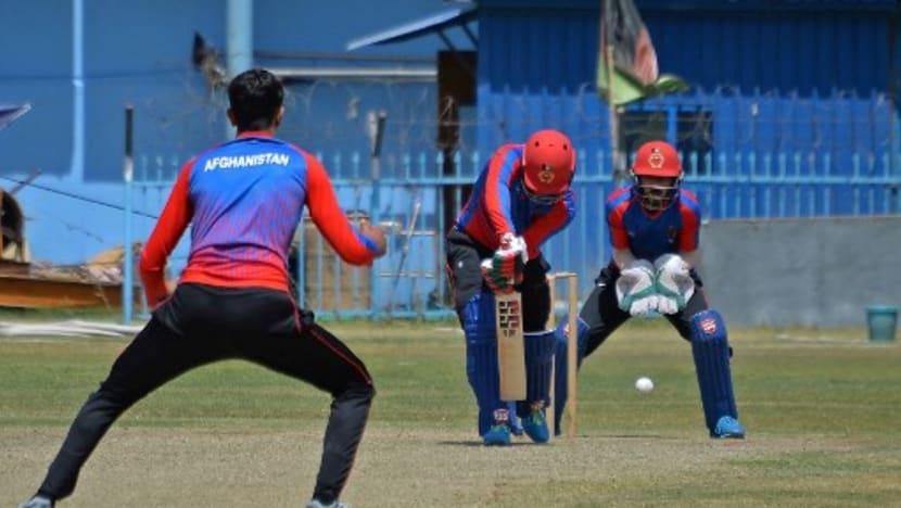 Cricket: Pakistan-Afghanistan ODI series postponed until next year
