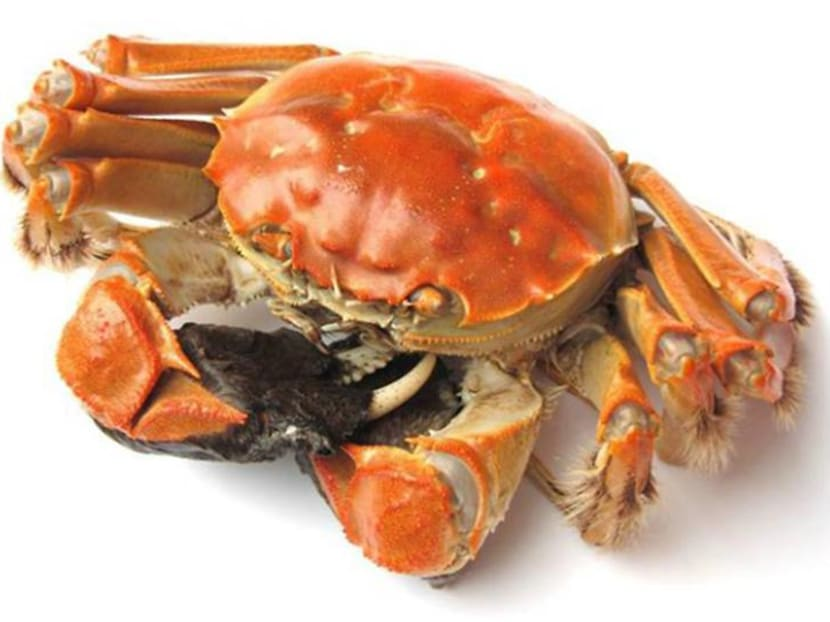 How to satisfy your craving for hairy crabs this season – without tummy troubles