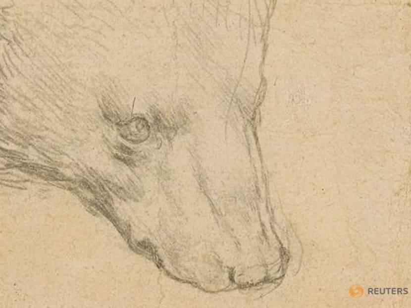 Leonardo Da Vinci's 'Head of Bear' drawing could fetch up to S$22.12 million