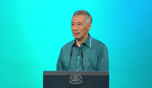 Prime Minister Lee Hsien Loong's National Day Rally speech in Chinese | Video