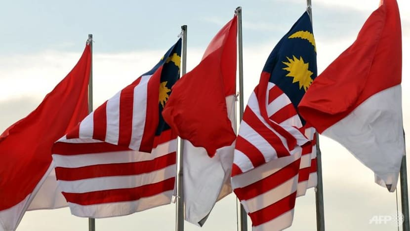 Malaysia, Indonesia agree to use drones to patrol borders