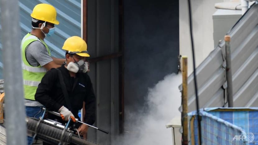 Weekly dengue cases fall to lowest in 'historic outbreak year', NEA urges continued vigilance