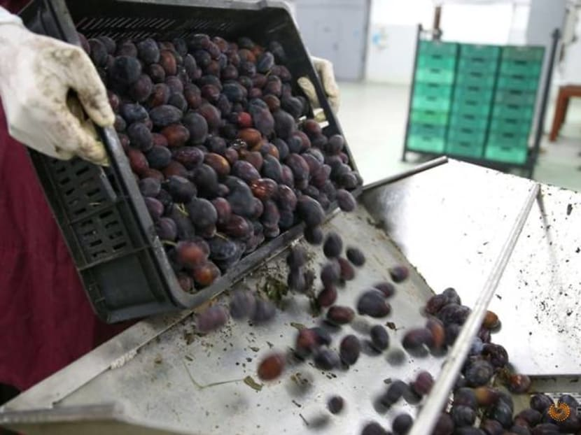 Bosnia's fruit growers prove resilient amid pandemic downturn