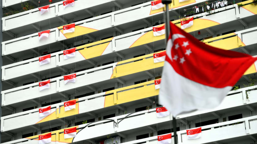 Singapore flag may be displayed now until September as 'demonstration of unity, solidarity' during COVID-19 outbreak: MCCY
