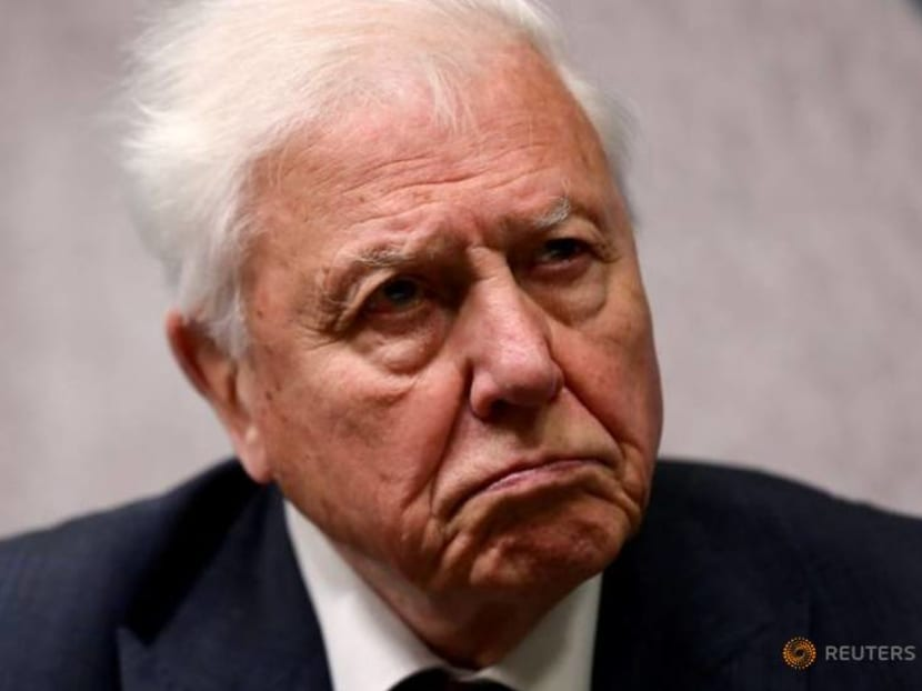 Veteran broadcaster and naturalist David Attenborough in appeal to save charity behind London Zoo