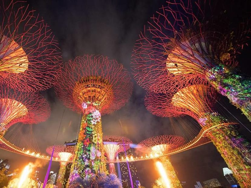 IndoChine Supertree at Gardens by the Bay to shut at the end of April