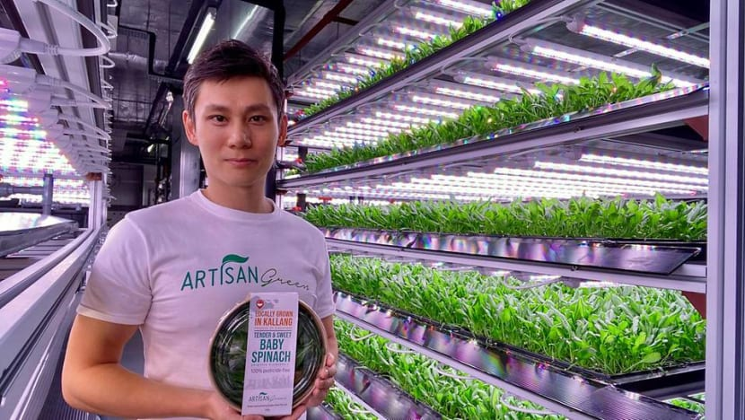 From Macau's casinos to a Kallang farm: The gaming industry professional who now grows baby spinach
