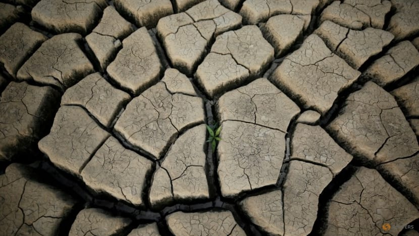 UN climate report increases urgency for green investment funds
