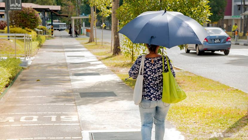 Dry, warm weather conditions expected in first half of March