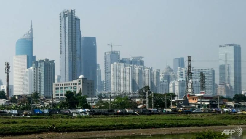 New Indonesian capital offers opportunities for development, but environmental pitfalls abound