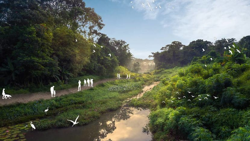 Two new trails at Clementi Nature Corridor to be progressively ready from 2023