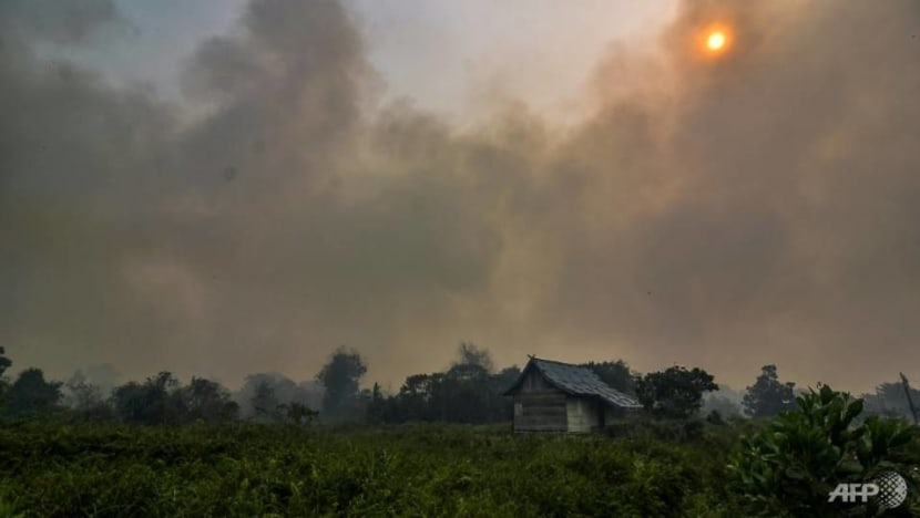 Malaysia ditches law to combat forest fire smog