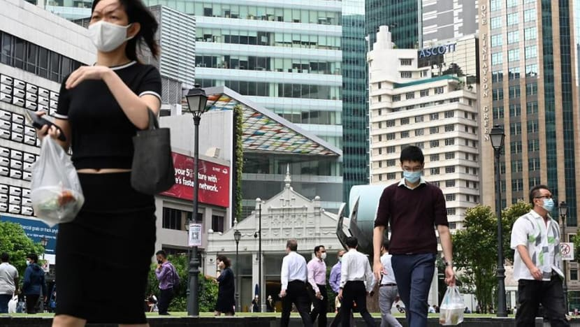 0.5% of Singapore's workforce are long-term visit pass holders