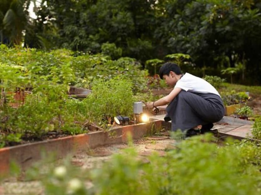 How Singapore's restaurateurs are rising to the challenges of sustainability