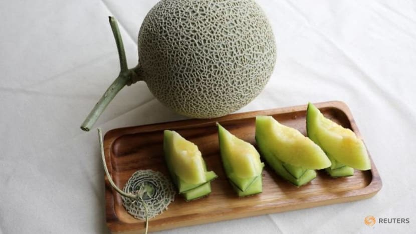 Music and massage: Malaysian farmers attempt to grow prized Japanese muskmelons