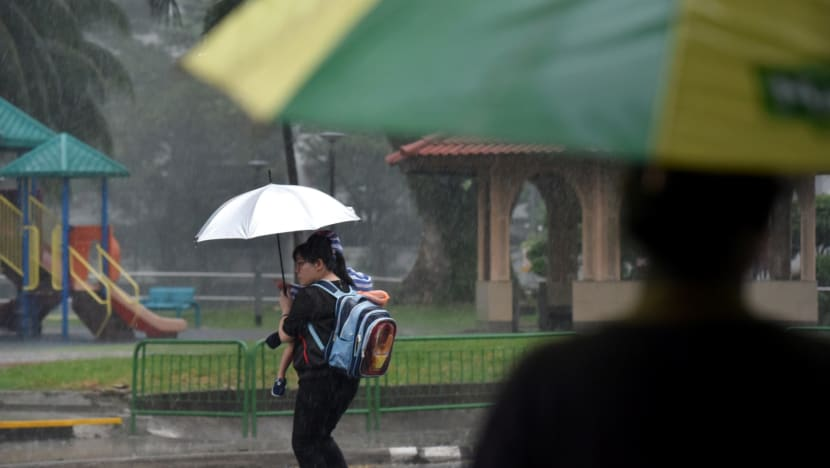 More rain expected in last two weeks of January