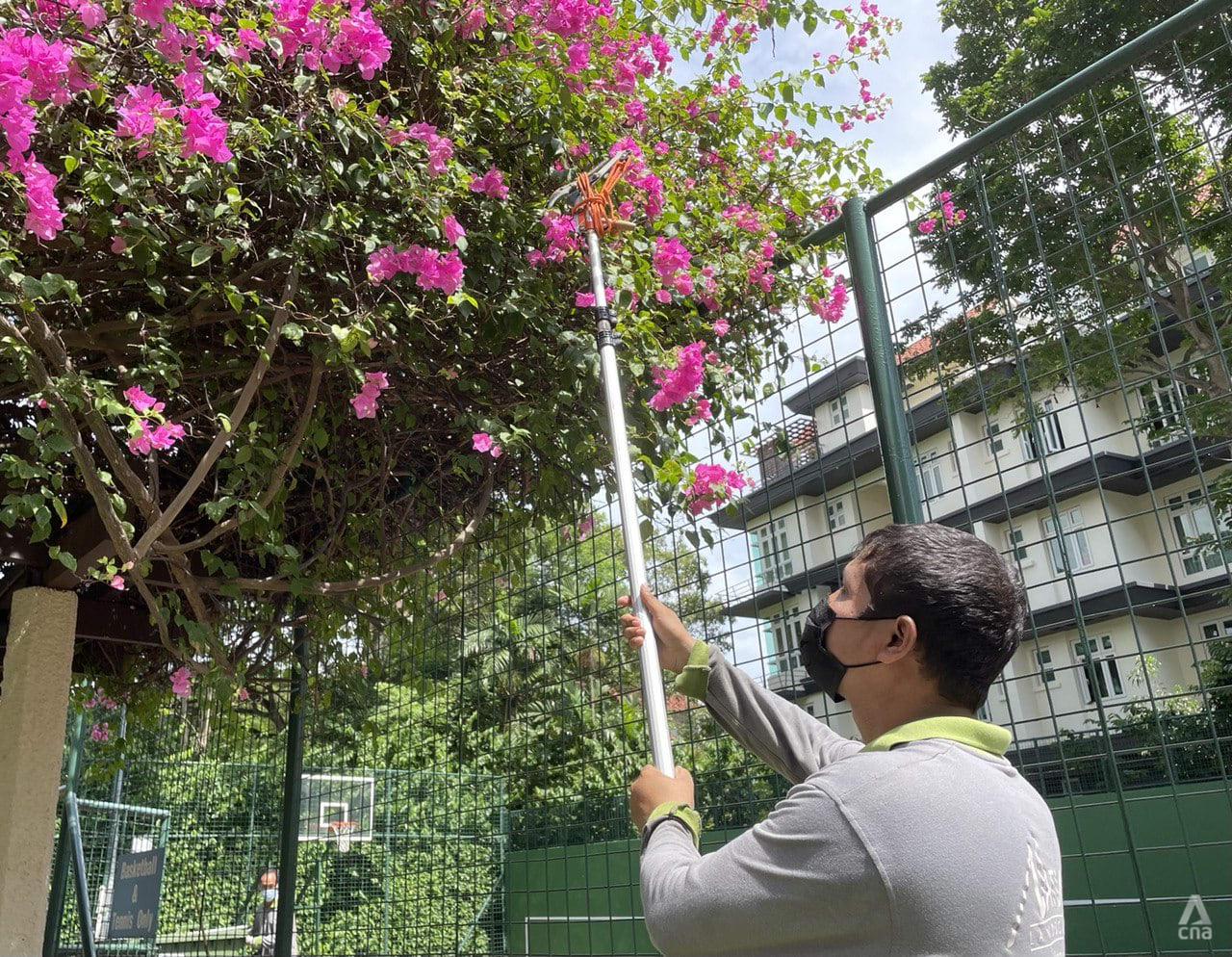 Baseline wages for landscape maintenance workers set to rise by 6% on average each year