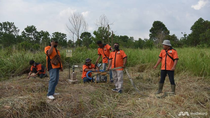 Planting crops, building wells: Local volunteers take the lead to prevent yearly peatland fires in Indonesia's Riau