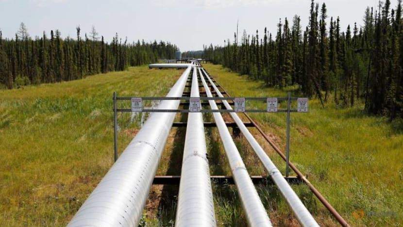 Resurgent Canadian natgas producers look to horn in on US market