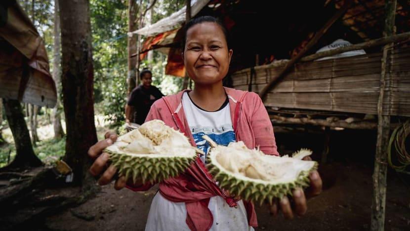 Bukan sebarang durian kampung:  Berbagai jenis durian kini ditawarkan masyarakat orang asli  Selangor
