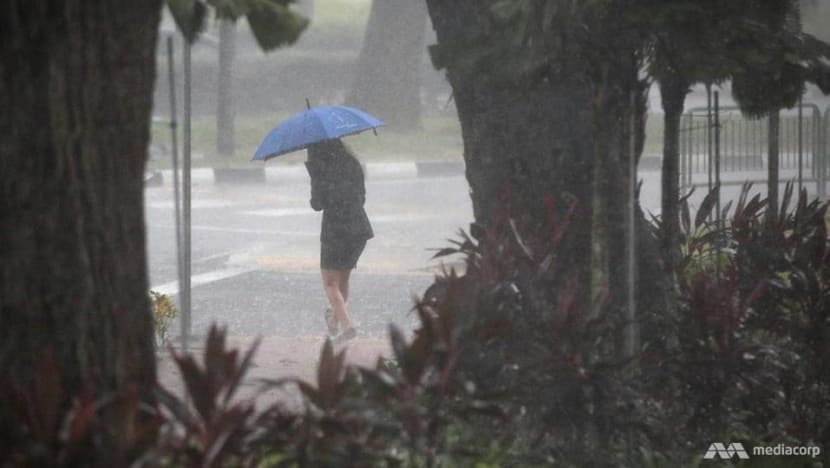 With climate change making weather more extreme, people need to adjust plans according to forecasts: Grace Fu